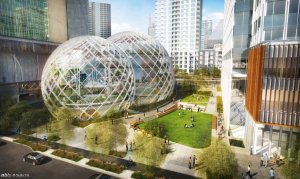 Amazon's Greenhous Biodome  Photo Credit: Huffington Post UK